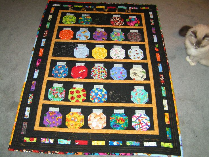 I Spy Bug Jar Quilt for my newest Grandson