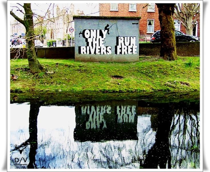 Only the rivers run free