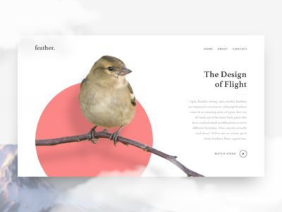 Feather – landing page