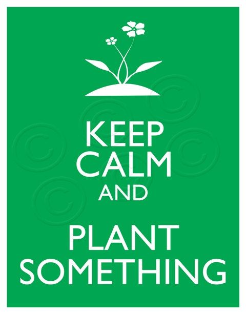 keep calm and plant ~ @meredith galloway ~ shall I be picky and say that's hard in November?  ;-)