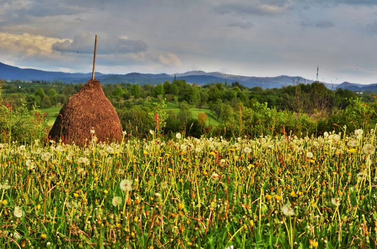 #Maramures, #Transylvania, #Romania http://www.touringromania.com/tours/long-tours/a-journey-back-in-time-countryside-life-from-transylvania-and-maramures.html