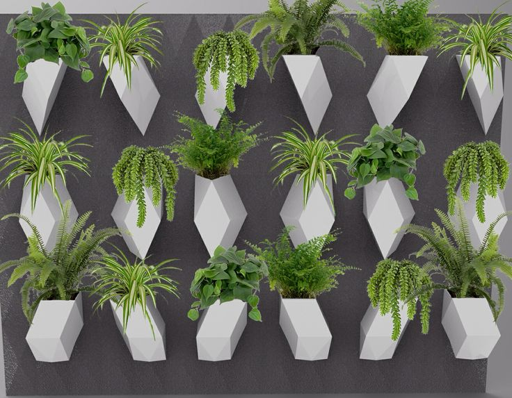 17 Best images about Green Wall Design on Pinterest