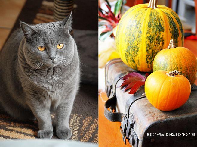 The Fanatic Calligrapher: Halloween decoration