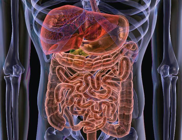 ОЧИЩЕНИЕ КИШЕЧНИКА НАРОДНЫМИ СРЕДСТВАМИ. Зашлакованный, забитый всяческой гадостью кишечник становится серьезной причиной возникновения самых разнообразных проблем со здоровьем, начиная от частых запоров и заканчивая серьезными недугами орг…