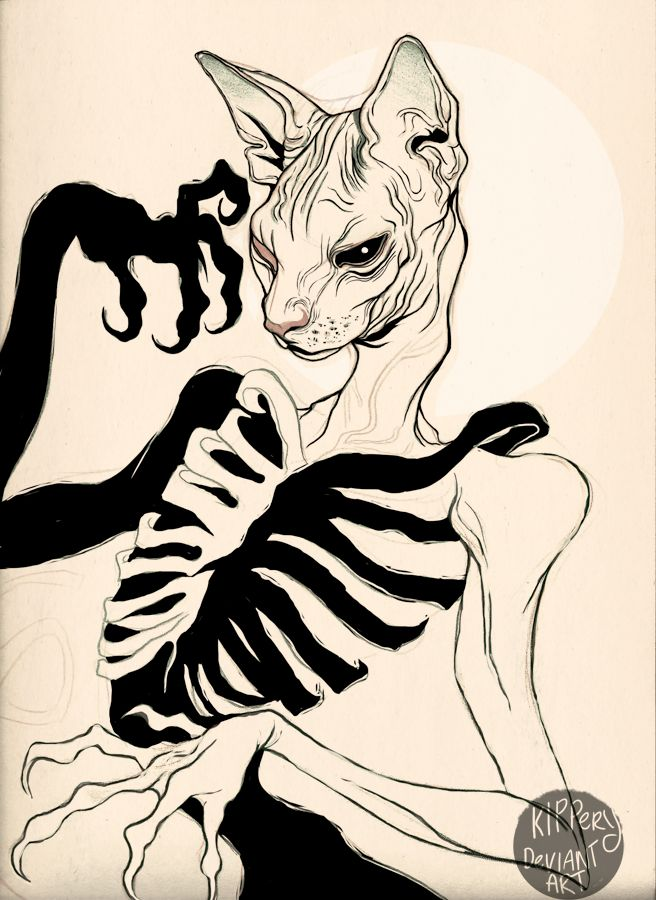 fail cat skeleton doodle - photo #5
