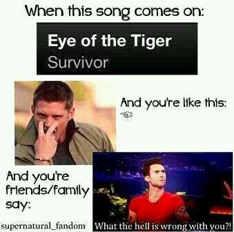 Eye of the Tiger - Survivor | Song Info | AllMusic