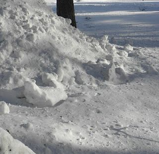 verkkokatsasus: uuden luonto katsasus laidet talven lumin pino