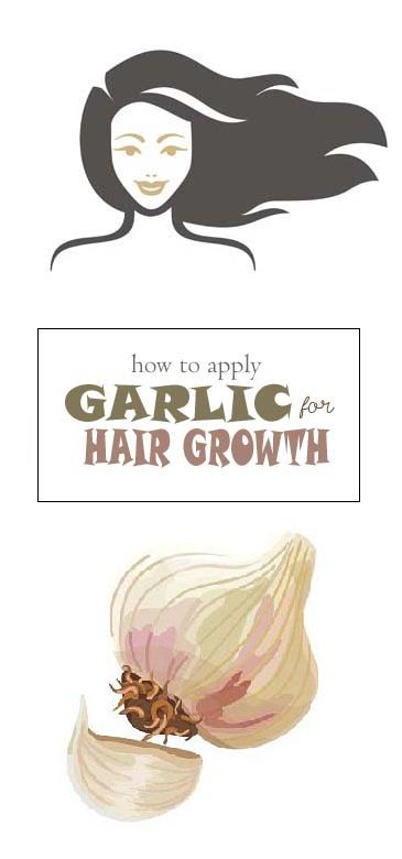 Garlic has long been used topically to treat hair loss and cure baldness. Check out our Article how to use Garlic for hair growth and stop hair loss.