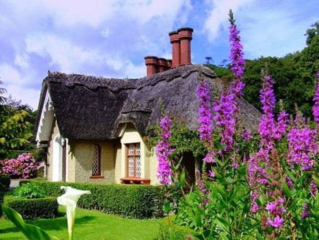 Killarney-Ireland-Cottage (165 pieces)
