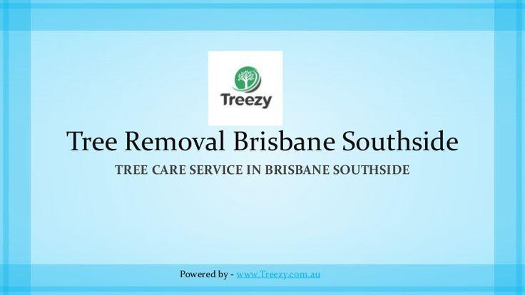 Emergency Tree Removal Brisbane Southside   https://www.slideshare.net/TreezyPtyLtd/emergency-tree-removal-brisbane-southside   #treeremoval #treeservices #emergencytreeremoval #treelopping #treeremovalBrisbaneSouthside #treeservicesBrisbaneSouthside #emergencytreeremovalBrisbaneSouthside #treeloppingBrisbaneSouthside #treezy #treezytreecare #treezytreeremoval #arborist