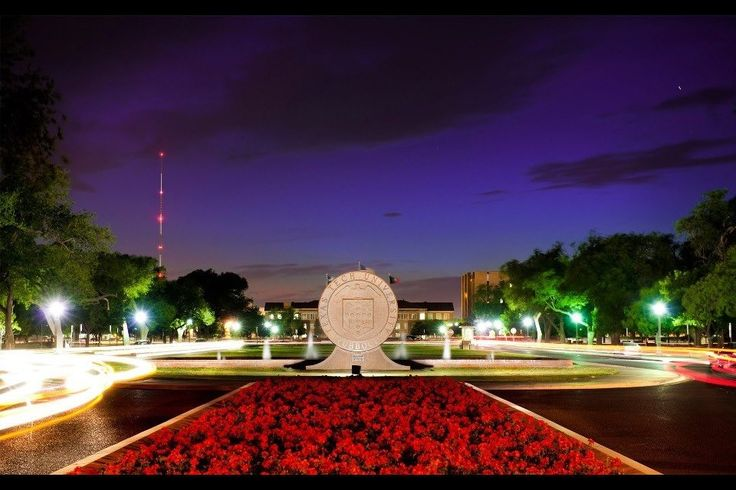 Texas Tech. In love with my school.
