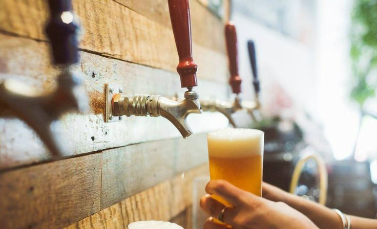 Five stops. Five breweries. All Sydney-made beer.