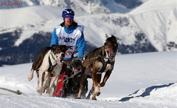 Když nechcete třeba na lyže, tak nejdete. Ale se psy musíte, říká musher