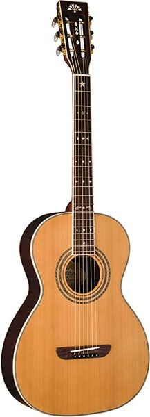 Washburn WP26SNS Parlor Guitar... like the soft simplicity of the bridge shape