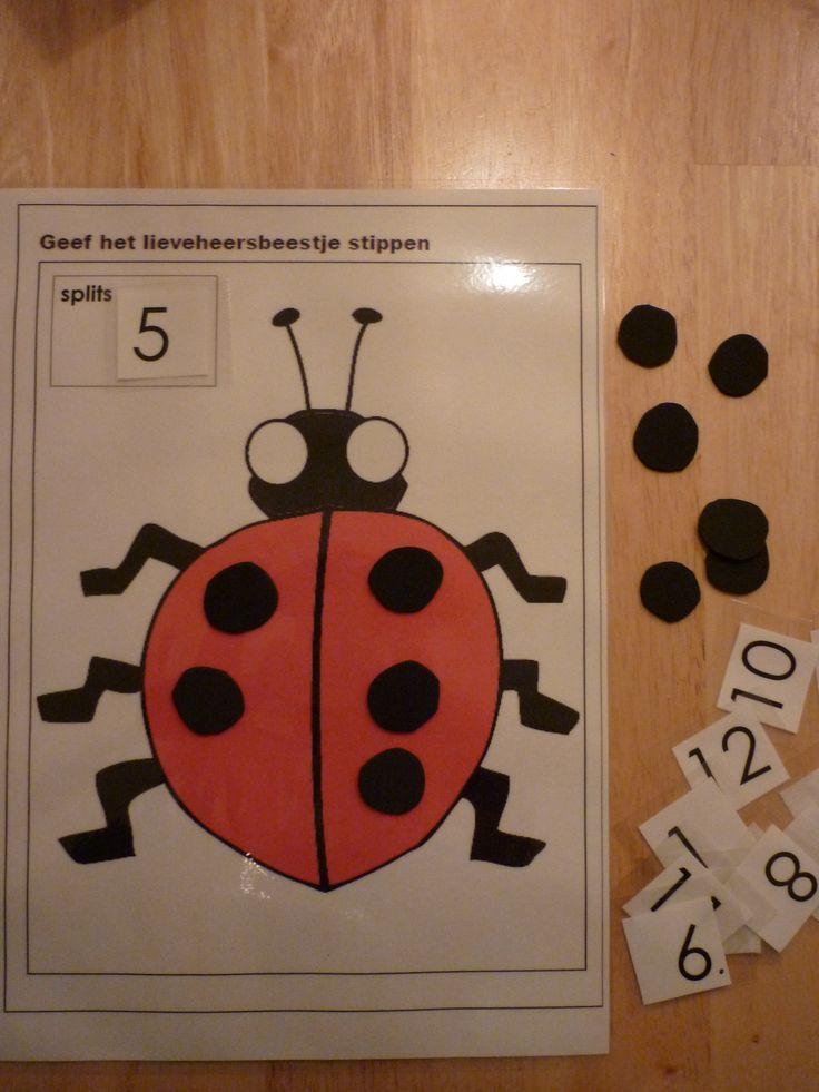 Splitsen: leg een getalkaartje in de hoek en verdeel de stippen op het schild van het lieveheersbeestje. Eventueel met werkblad waarop de kinderen steeds de stippen op andere manieren kunnen natekenen.