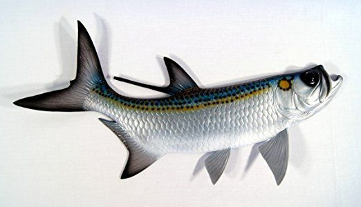 Hand Painted Replica Tarpon Fish Ocean Coastal Fly Game Fishing Wall Mount Decor 28""