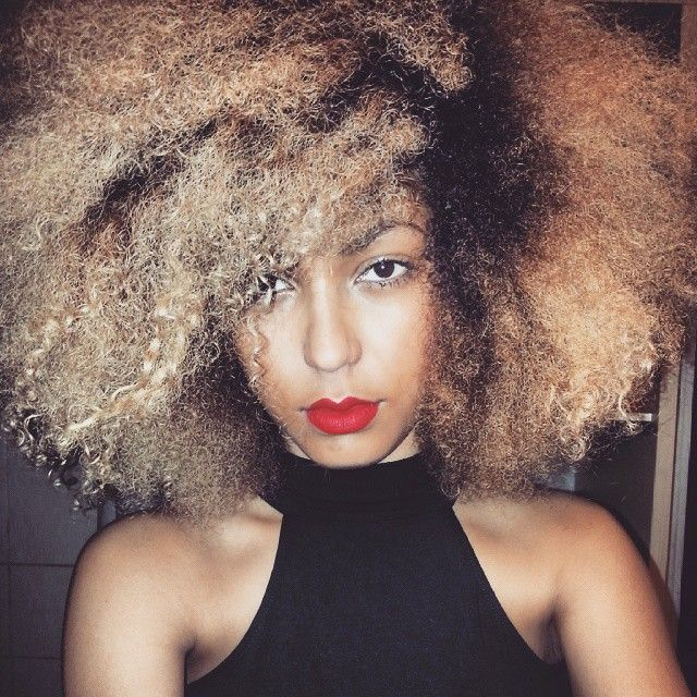 The 25 best afro hair with blonde highlights ideas on pinterest natural hair afro blonde natural natural hair with blonde highlights natural hair pmusecretfo Choice Image
