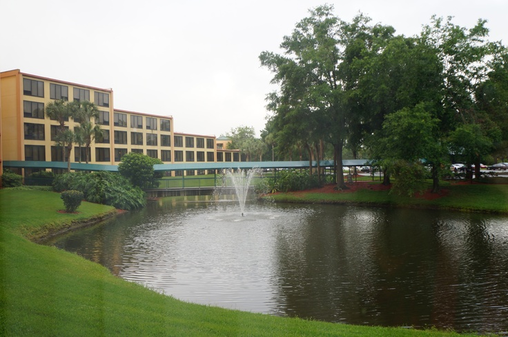 Hotel Radisson. Orlando FL