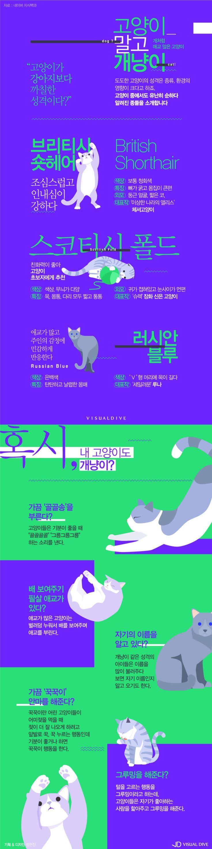 도도한 고양이? 출구 없는 개냥이의 세계 [인포그래픽] #cat / #Infographic ⓒ 비주얼다이브 무단 복사·전재·재배포 금지