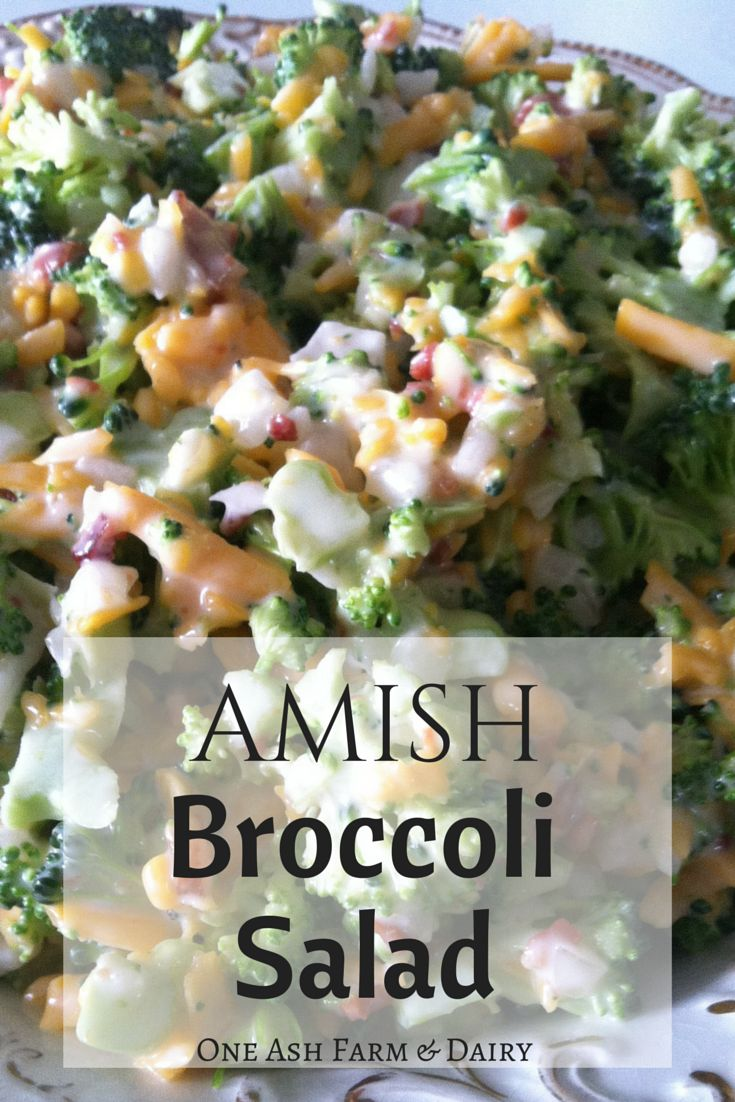 One Ash Farm and Dairy Homestead: Amish Broccoli Salad                                                                                                                                                     More