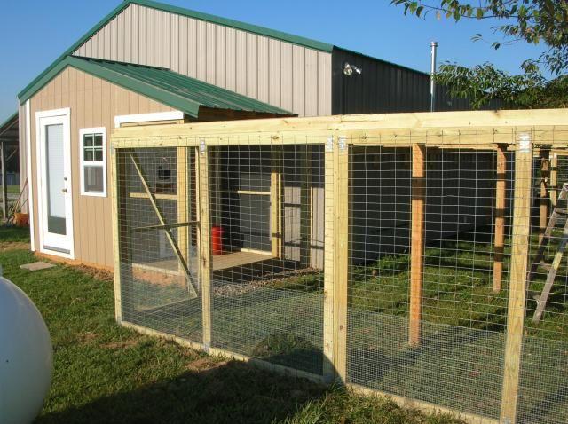 32 Best Chicken Coop Fence Images On Pinterest Chicken