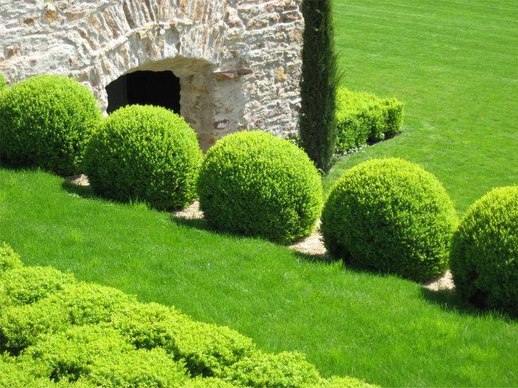 Ábrahámhegy. Green forms. Balaton. Constructed by Magnolia Art Kertépítő Kft.
