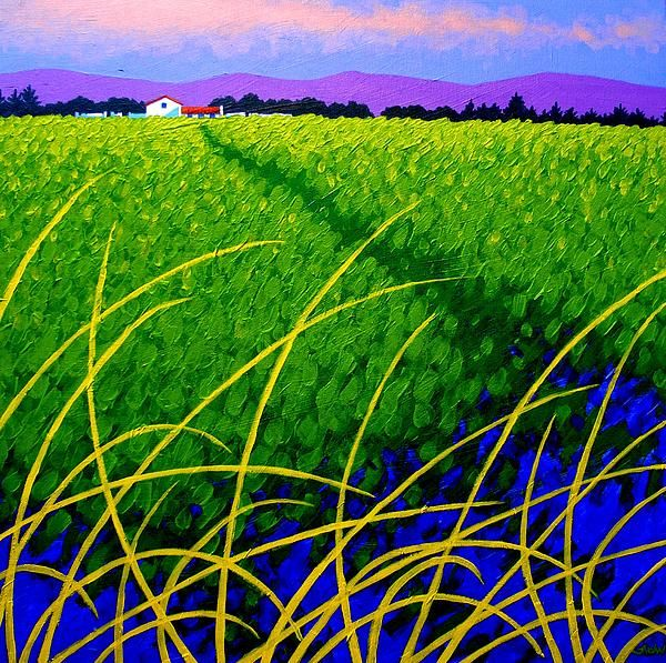 Purple Hills -  Ireland Painting   John Nolan - obviously, I'd like to think we're related!