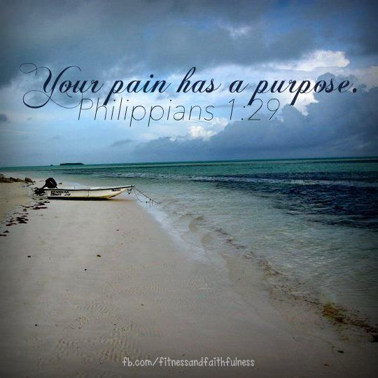 Bible Inspirational Quotes About Life: ~Philippians 1:29. Please God, Let Me Know That Purpose