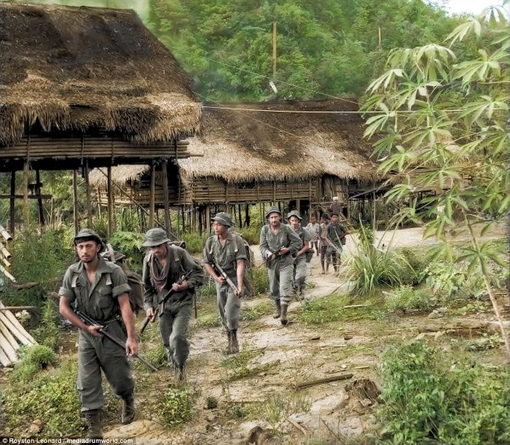 British troops and their allies march through the jungle during the Malayan Emergency.The Malayan economy was left in turmoil following the withdrawal of Japan at the end of the Second World War. Attempts were made by the British administration to repair the country's economy, as revenue from Malaya's tin and rubber industries were important to Britain's own post-war recovery