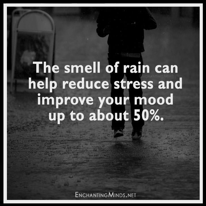Positive Quotes Rain: Best 25+ Smell Of Rain Ideas On Pinterest