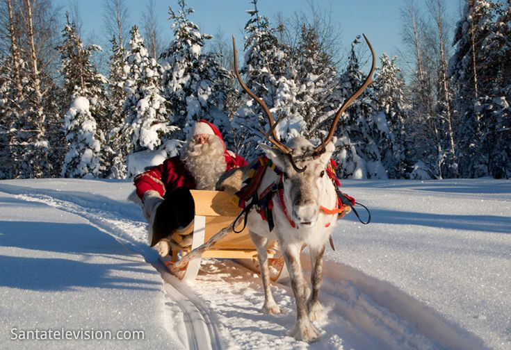 Santa Claus alias Father Christmas and his reindeer in Lapland in Finland