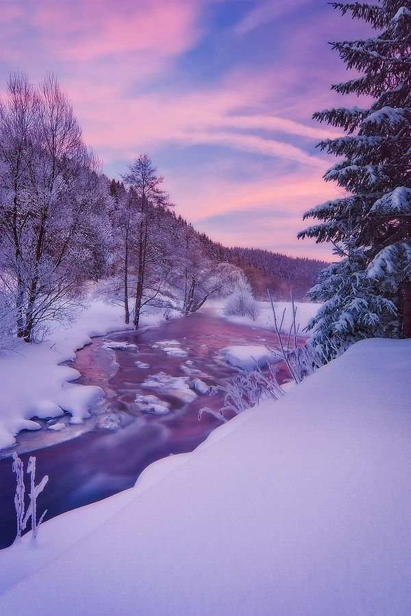 Frosty (Ore Mountains, Germany) by David Richter / 500px