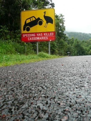 Grappige verkeersborden :)