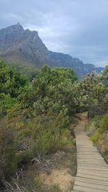 http://adorkablesa.blogspot.co.za/2017/06/a-travel-guide-spontaneous-four-day.html  Lion's Head Hike.