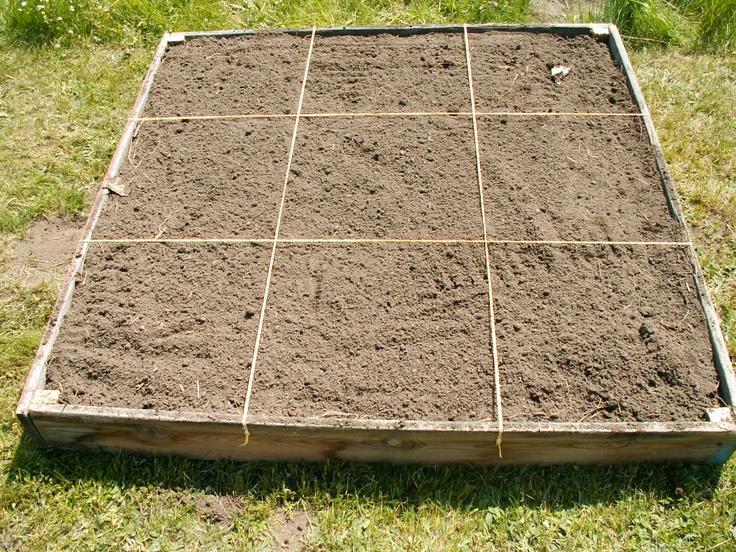 mit Kompost und Erde auffüllem und in gleichgroße Flächen teilen
