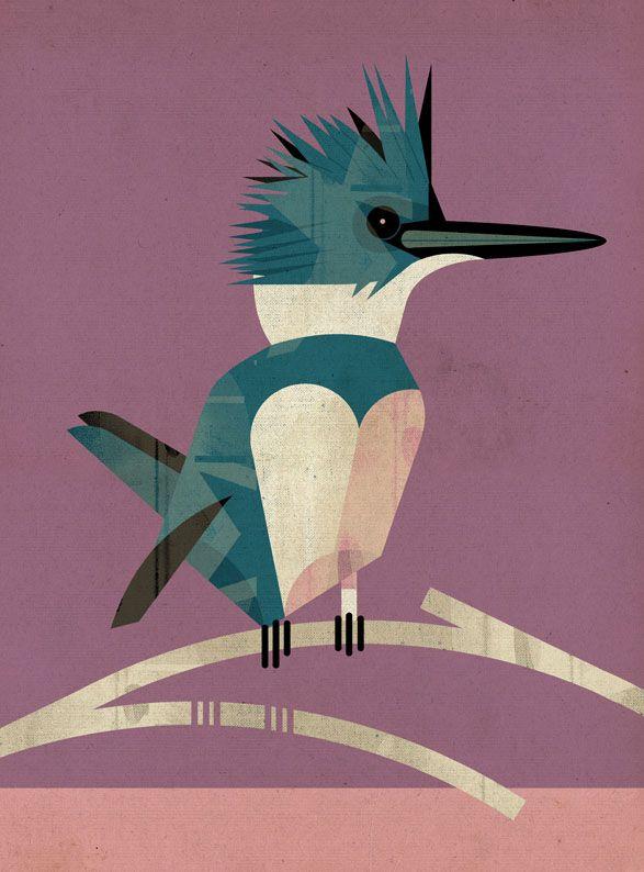 Kingfisher. © Dieter Braun Illustration