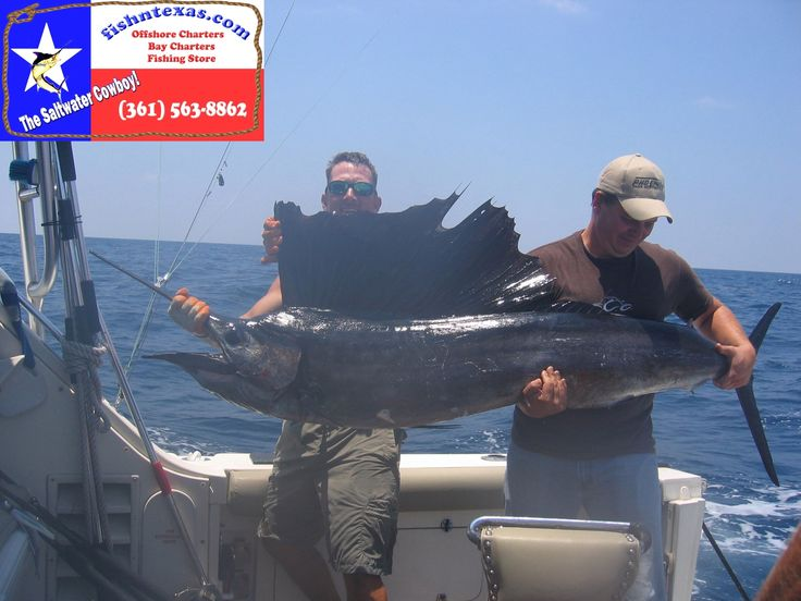 11 best road trip images on pinterest rockport texas for Port aransas fishing guides