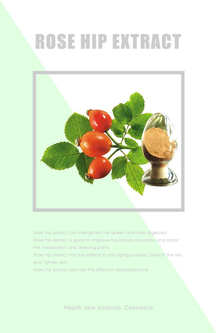 Rose Hip Powder Rosehip Tablets Organic Rosehip Powder Vitamin C With Rose Hips Rosehip Tea