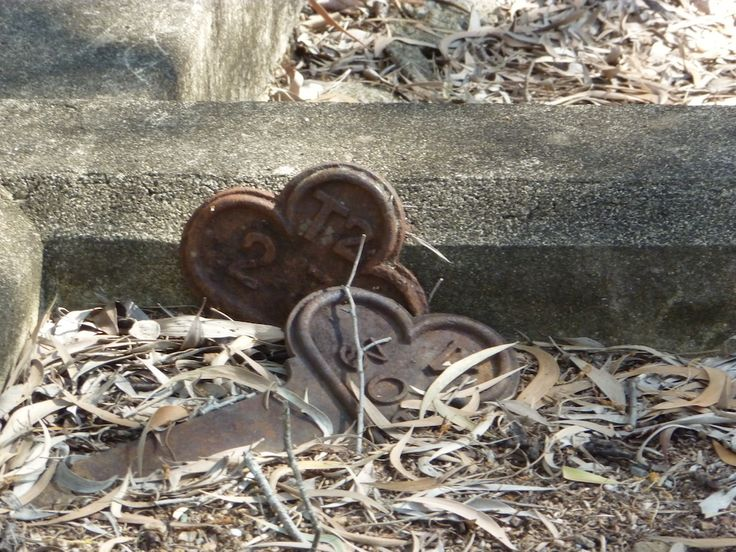 So, after all of my adventures at Toowong Cemetery, what was the end result? Did I solve all my brick walls in one fell swoop? Hardly...