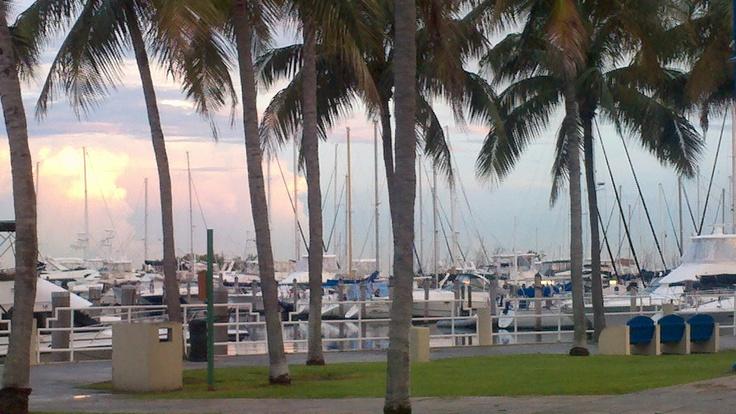 Lovely sunset at Dinner Key Marina, Coconut Grove, FLA