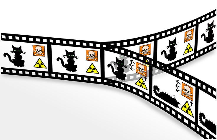 Duri a morire - Il gatto di Schrödinger