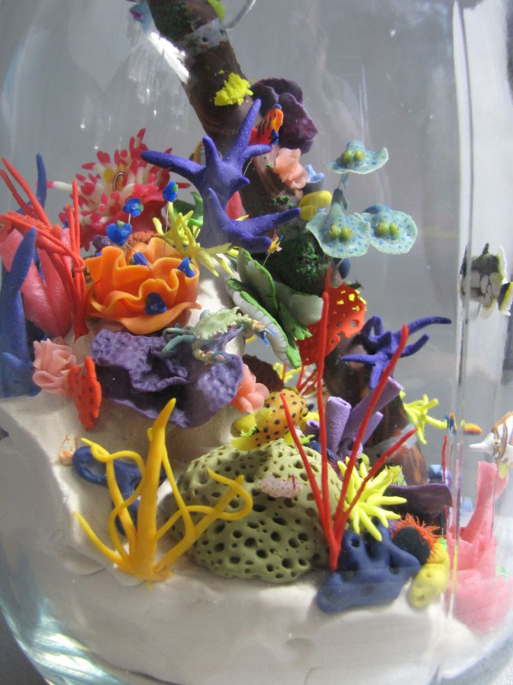 these are some pictures of a massive miniature coral reef i did for a sculping class, theres alot in the jar, which stands 9 inches tall and 5 wide, although the area used is smaller. i wanted the ...