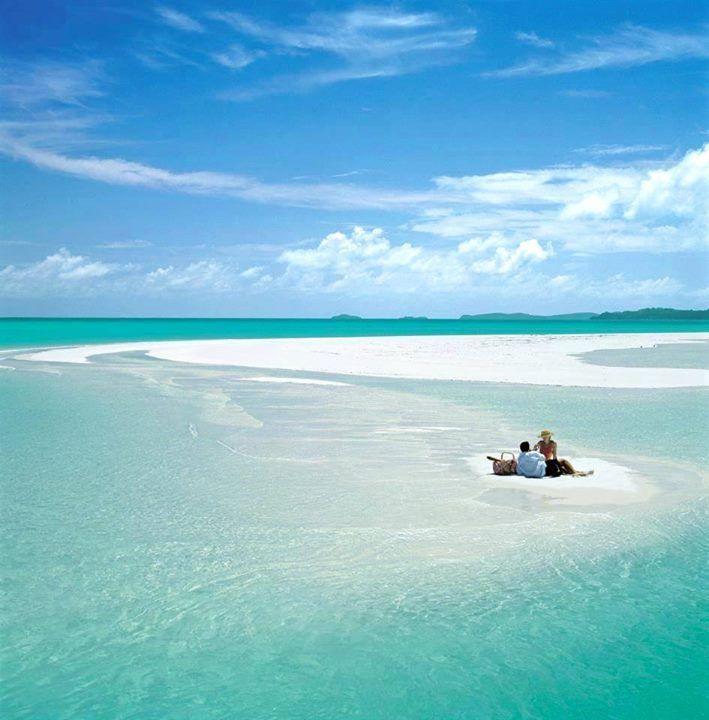 Hamilton Island (Queensland)