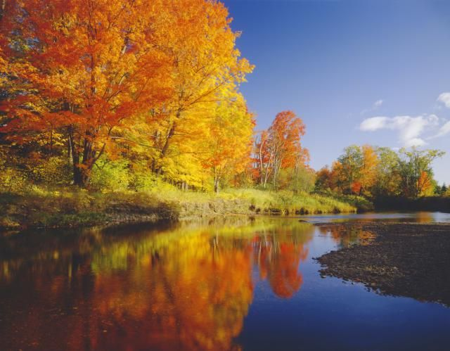 New England Fall Foliage Tours: Don't Leave Leaf-Peeping to Chance!: If you don't want to miss sights like this but don't have time to research and plan a fall foliage trip, book a guided New England tour this autumn.