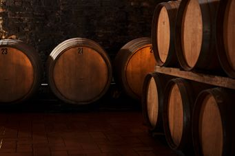 #tuscanycook #cellars #tour and #winetasting come to visit us at www.tuscanycook.com