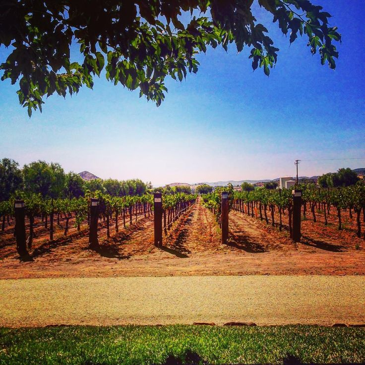 You can't beat the view from Santa Clarita's Agua Dulce Winery!