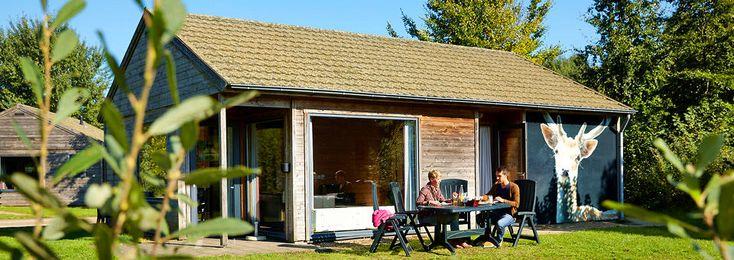Voor grote gezinnen met zes personen is deze luxe vakantiebungalow met sauna op Vakantiepark Dierenbos een perfecte vakantieplek voor ouders en kinderen.