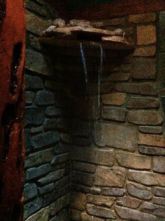 Waterfall Shower Master Bath Remodel Pinterest