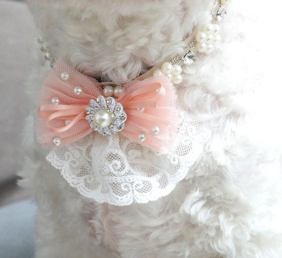 Vintage dog necklace, pearl Rhinestone collar, flower necklace, ivory collar, ribbon collar, wedding dog accessory, wedding/ball dog collar on Etsy, $49.00