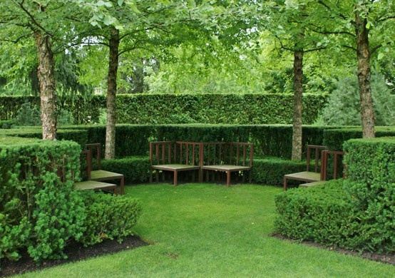 hedge and bench